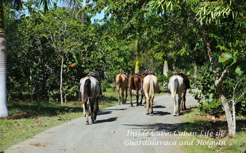 Inside Cuba: Cuban Life in Guardalavaca and Holguin