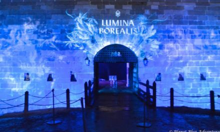 Escape to Lumina Borealis for Some Winter Magic