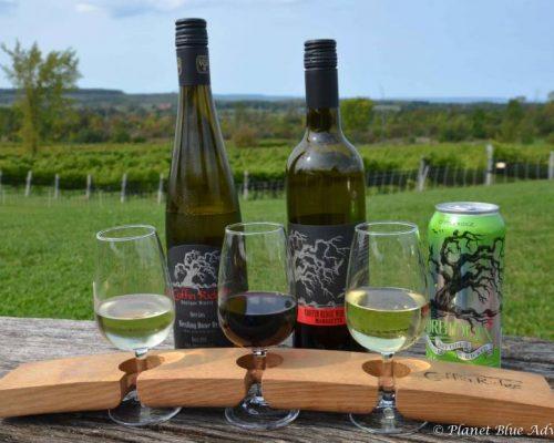 Resting House B&B Wine Tasting